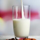 extracteur de jus lait d'amande
