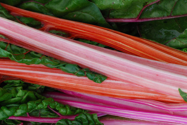 Zinc dans rhubarbe