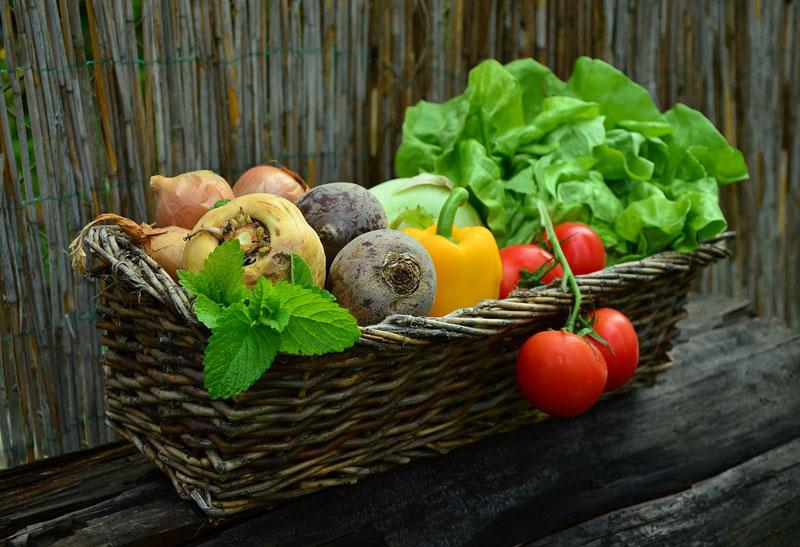 Légumes et nutriments