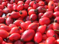 Antioxidants dans les jus